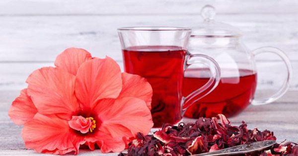 Já ouviu falar da dieta do chá de hibisco? Descubra aqui como ela funciona