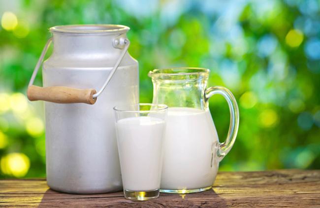 Descubra aqui as mentiras e verdades sobre o leite