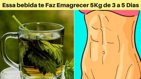 Acelere a perda do peso e elimine gordura abdominal usando essas ervas